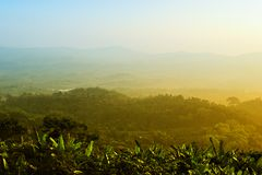 złoty krajobrazowy moment Zdjęcie Royalty Free