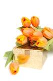 złoty target407_0_ pomarańcze teraźniejszy tulipanów kolor żółty Zdjęcia Royalty Free