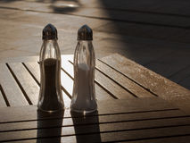 Zout en peper die een sunbath hebben Stock Fotografie