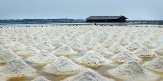 zout landbouwbedrijf bij Verbod laem-Thailand stock fotografie