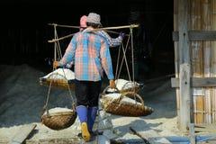 zout landbouwbedrijf bij Verbod laem-Thailand stock afbeelding