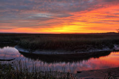 Zout Marsh Sunset Stock Foto