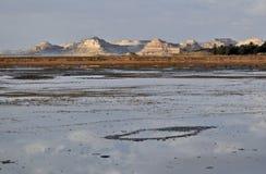 Zout meer in de oase Siwa stock afbeeldingen
