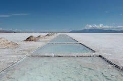 Zout meer dichtbij Salta, Argentinië Stock Foto's