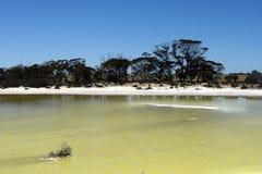 Zout meer met water tussen Hyden en Albany, WA, Australi royalty-vrije stock foto