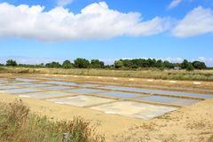 Zout water van het drogen op het eiland oleron Frankrijk Stock Afbeelding