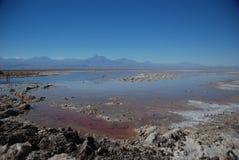 Zout in woestijn Atacama Stock Foto
