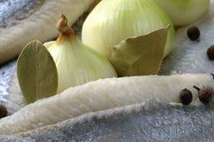 Zoute haringen & ingrediënten Royalty-vrije Stock Afbeeldingen