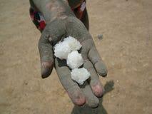 Zoute Kristallen van Dode Overzees in Israël Stock Foto's
