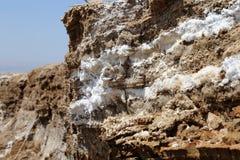 Zoute kristallisatie bij kust van het Dode Overzees, Jordanië stock foto's
