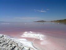 Zoute kust van Great Salt Lake stock fotografie