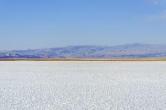 Zoute lagune San Pedro de Atacama stock afbeeldingen