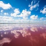 Zoute roze lagune in Las Coloradas, Yucatan, Mexico royalty-vrije stock afbeeldingen