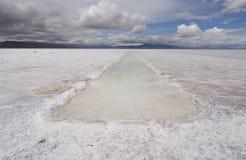 Zoute Vlakten, Noord-Argentinië stock fotografie