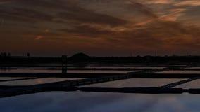 Zoute vlakten van Aveiro bij zonsondergang stock video