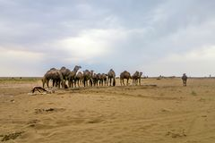Zoute Woestijn 02 van Kashanmaranjab stock foto