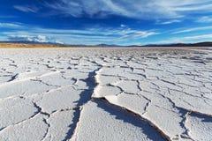 Zoutmeren in Argentinië royalty-vrije stock fotografie