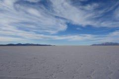 Zoutmeren grandes/grote salines - salta & jujuy, Argentinië stock afbeeldingen