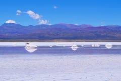 Zoutmeren Salitral Grandes, de woestijn van Great Salt Lake, dichtbij Susques, Jujuy-Provincie, Argentinië royalty-vrije stock foto's