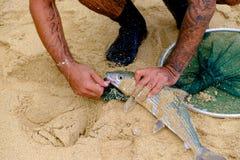 Zoutwater die Oahu Hawaï vissen royalty-vrije stock foto's