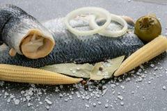 Zoutwater gemarineerde vissen, koud voorgerecht royalty-vrije stock afbeelding