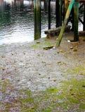 Zoutwater het Opstapelen zich royalty-vrije stock foto's