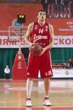 Zozulin Aleksey Zdjęcia Stock