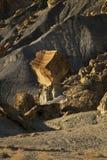 Zrównoważona skała w roztoka jaru Krajowym Rekreacyjnym terenie, Jeziorny Powe Zdjęcie Royalty Free