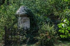 zrastający się grób z żelaza ogrodzeniem obrazy royalty free