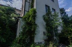 zrastający się monasteru szczegół zdjęcie royalty free