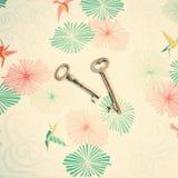 Zredukowani klucze Zdjęcia Royalty Free
