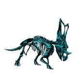 Zredukowany inosaur Triceratop Zdjęcie Stock