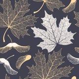 Zredukowany liści klonowych i ziaren bezszwowy wzór ilustracji