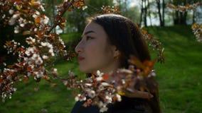 Zrelaksowana azjatykcia dziewczyna w kwitnąć czereśniowych okwitnięcia zbiory wideo