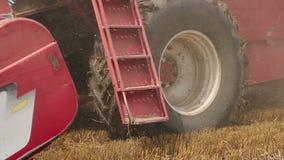 Zrenjanin, SERBIA- August 2013:  Wheat Harvest stock video footage