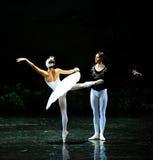 Zu den Prinzen von Ojta-Ballett Swan See retten Stockbild