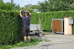 Zu eine Hecke, arbeitend befestigen im Garten Lizenzfreies Stockbild
