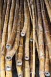 Zu errichten Bambus lizenzfreies stockbild