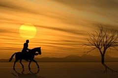 Zu Pferde Fahrt am Sonnenuntergang lizenzfreie abbildung