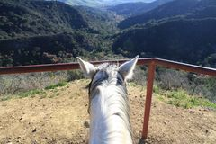 Zu Pferde Mountain View Lizenzfreies Stockfoto