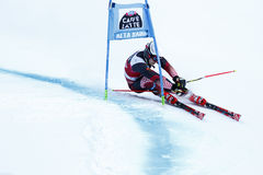 ZUBCIC Filip in Audi Fis Alpine Skiing World-Kop Men's Reuzes Stock Afbeelding