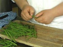 Zubereitung der Bohnen Stockfotografie