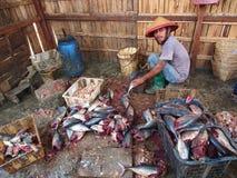 Zubereitung des Fisch-Fleisches für das Trocknen Stockfotos