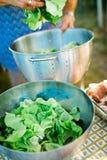 Zubereitung des Kopfsalates in der Stahlschüssel stockfoto