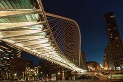Zubizuri桥梁毕尔巴鄂 免版税库存图片