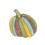 Zucca in acquerello Immagini Stock