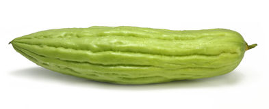 Zucca amara Immagini Stock