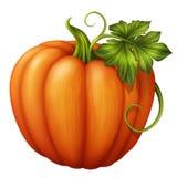 Zucca arancio di autunno con la foglia verde, illustrazione di clipart isolata su fondo bianco Immagine Stock Libera da Diritti