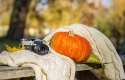 Zucca arancio e vecchia macchina fotografica con le foglie fotografia stock
