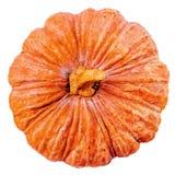 Zucca arancio fresca isolata su fondo bianco, vista superiore Immagine Stock